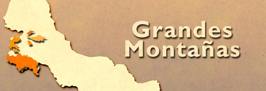 GM_Banner