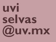 Selvas_email