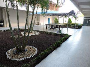 Tenis de Mesa y Jardín