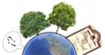 Plan Maestro de Sustentabilidad