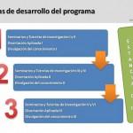 Etapas de Desarrollo del Programa