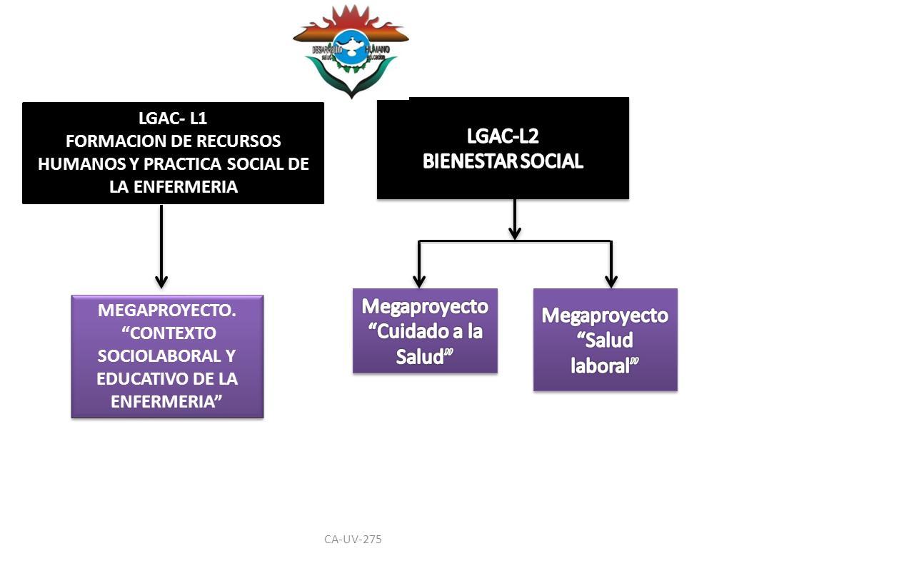 Lineas de Investigación - Facultad de Enfermería Región Veracruz Oscar