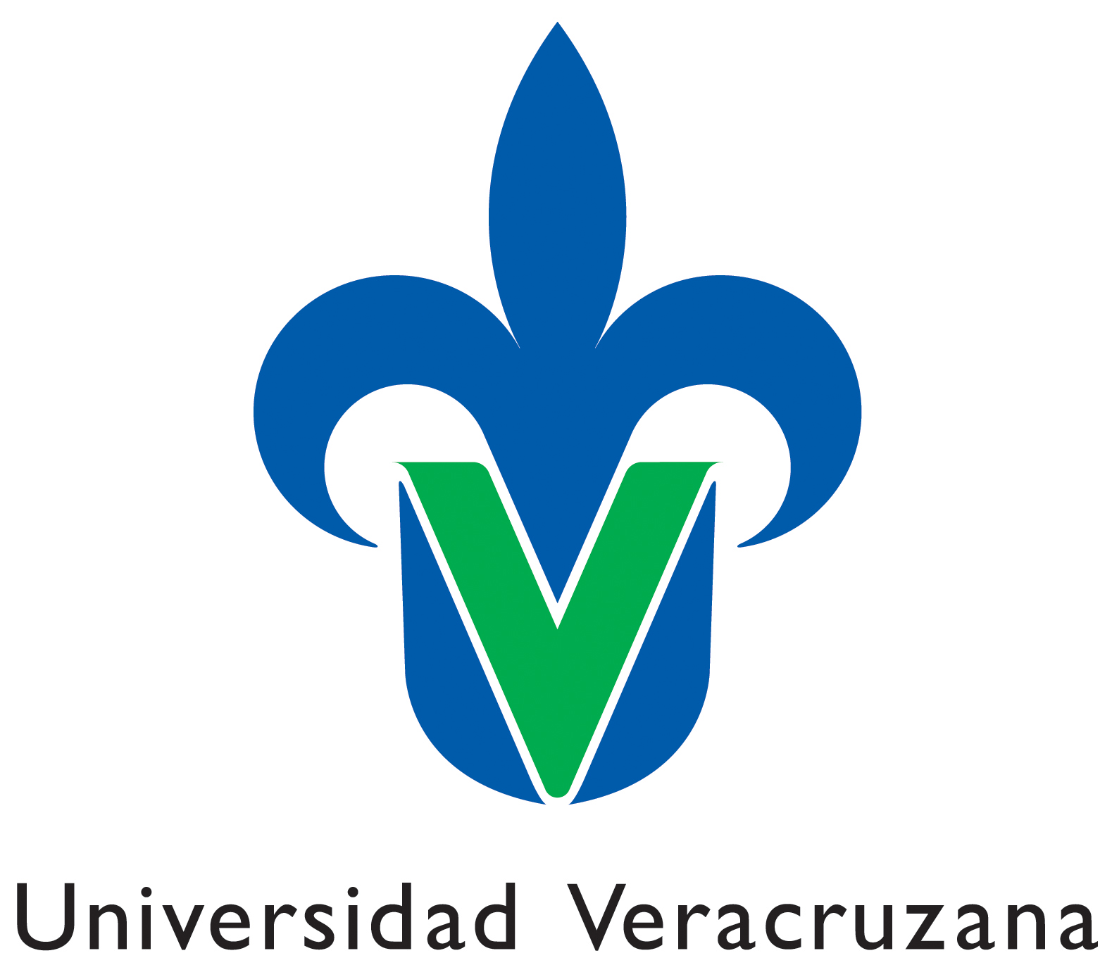 Resultado de imagen de universidad veracruzana