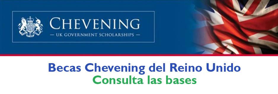 Chevening-banner-beca