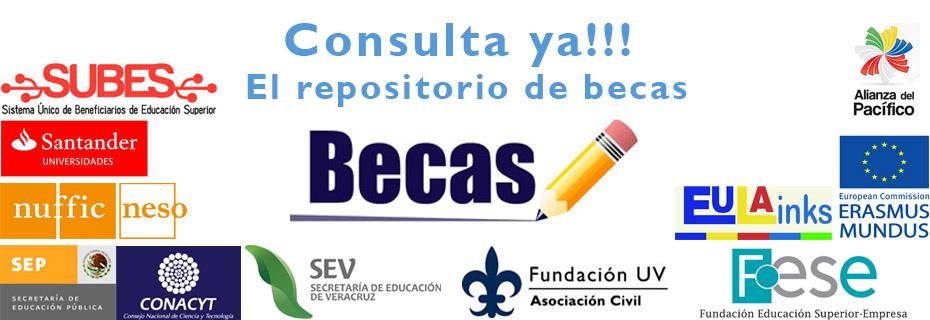 28-02-2015 Becas Repositorio-2