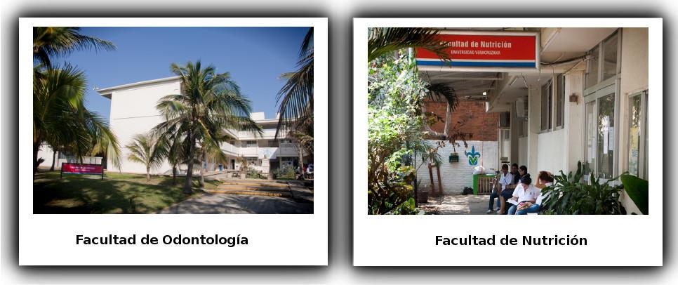 FotoNutricionOdontologia